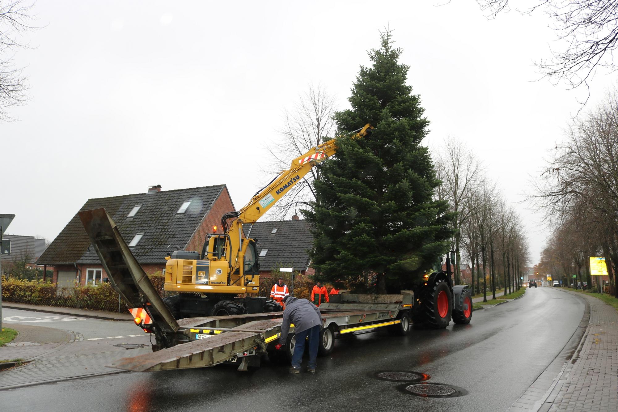 20191119 Weihnachtsbaum 2