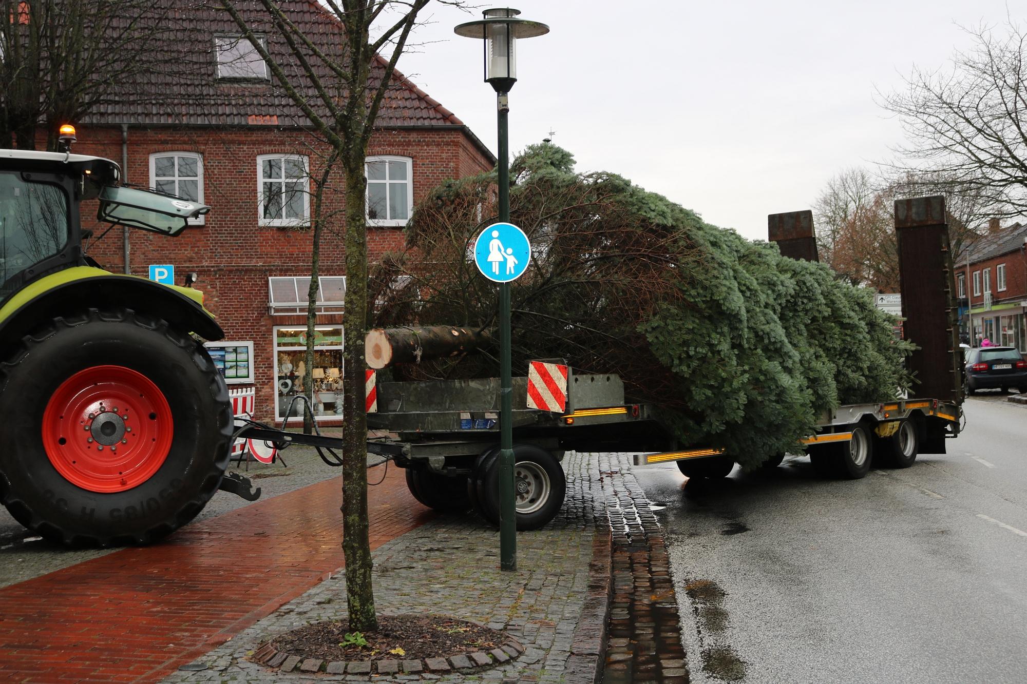 20191119 Weihnachtsbaum 5