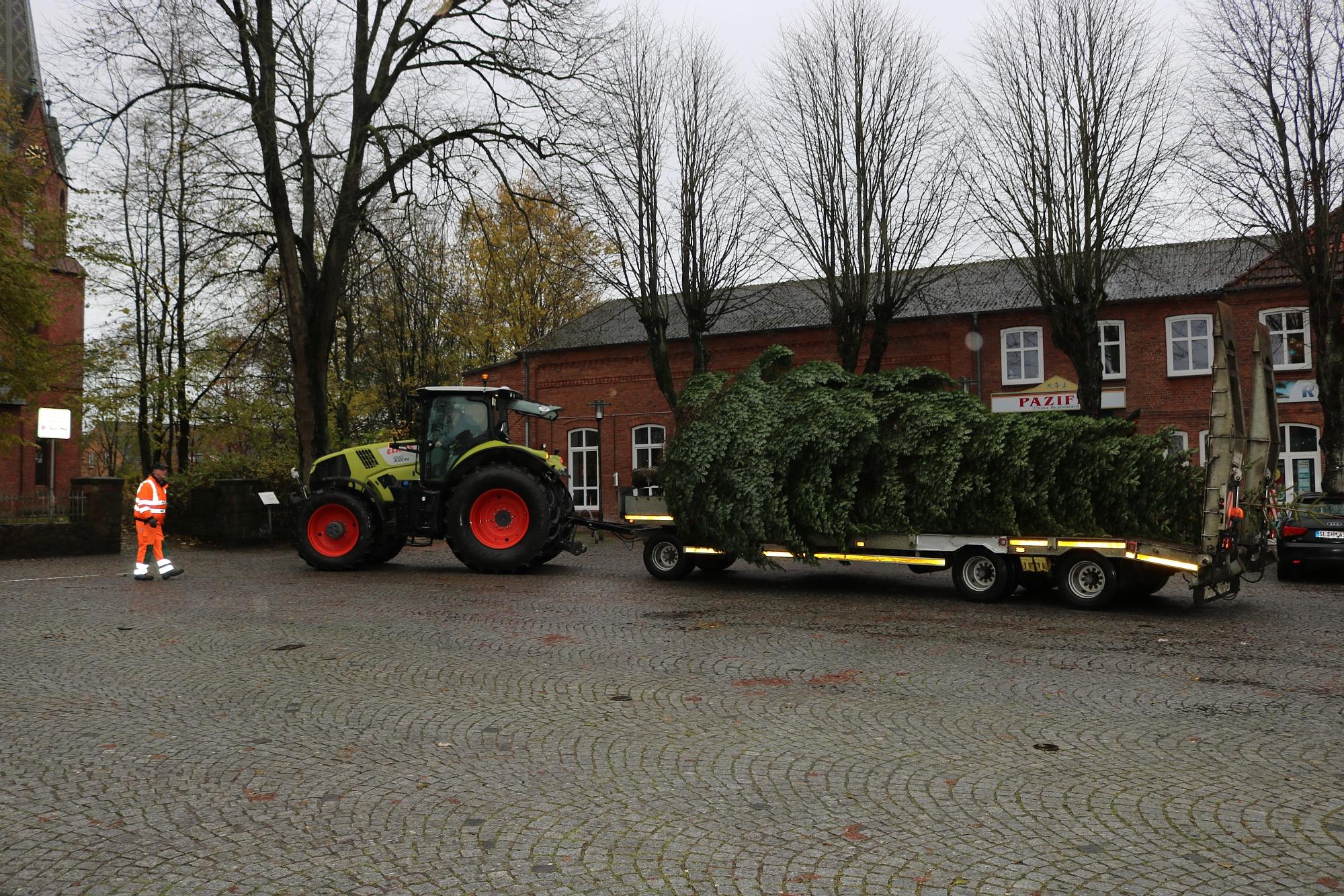 20191119 Weihnachtsbaum 6