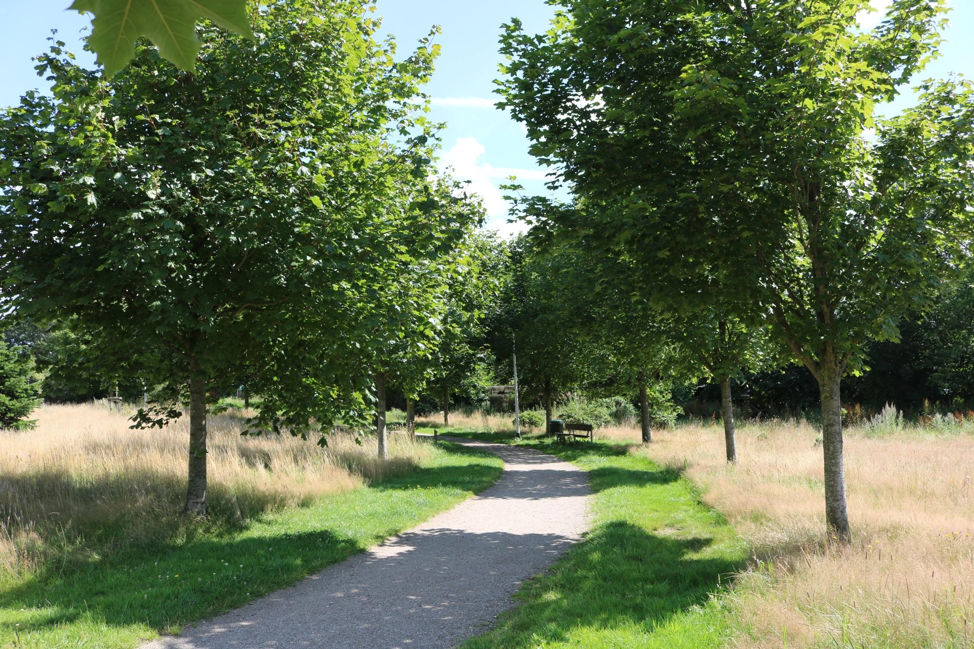 2020 Bürgerpark 3 web