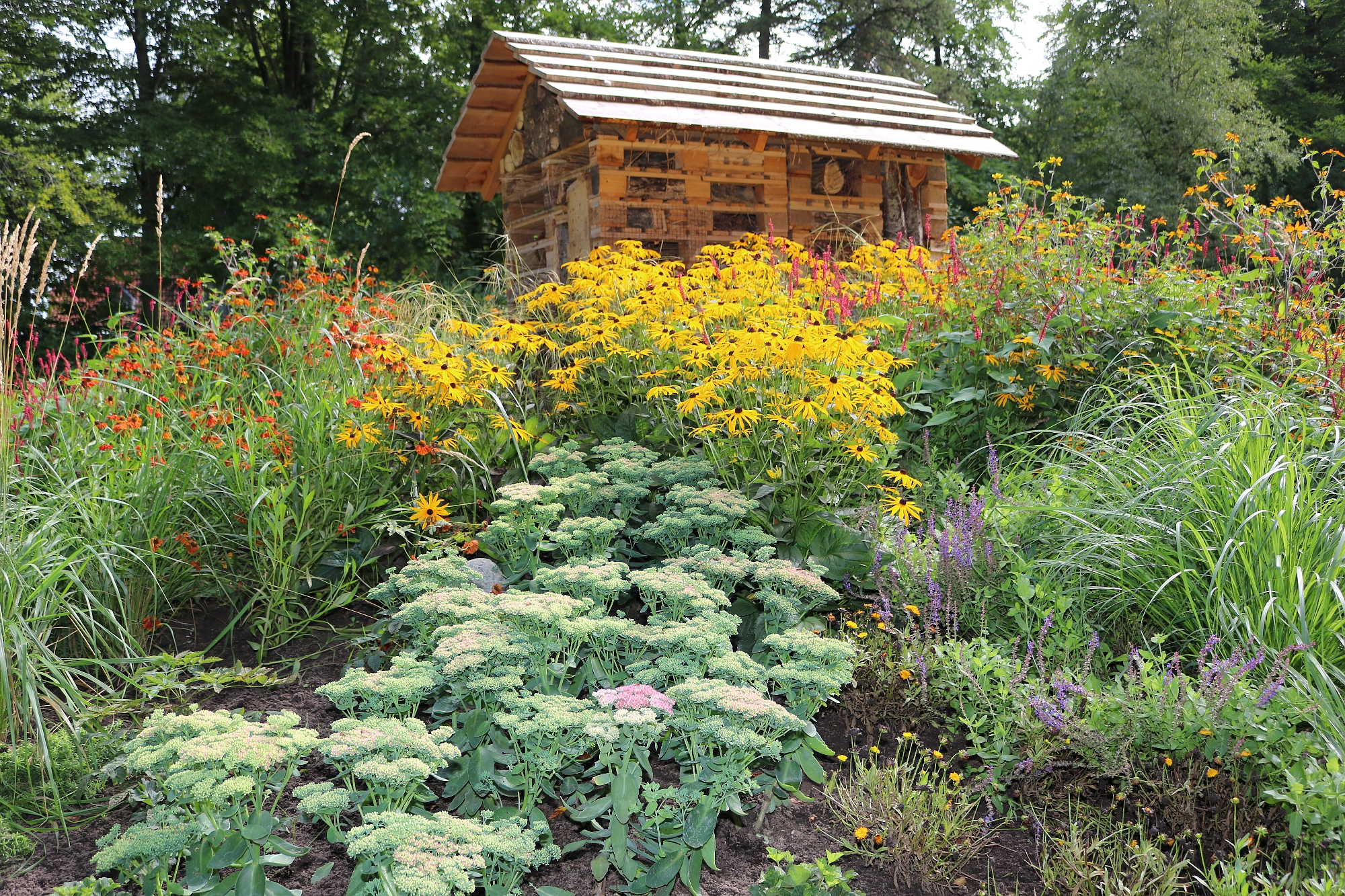 202008 Kaiserhain Insektenhotel 5