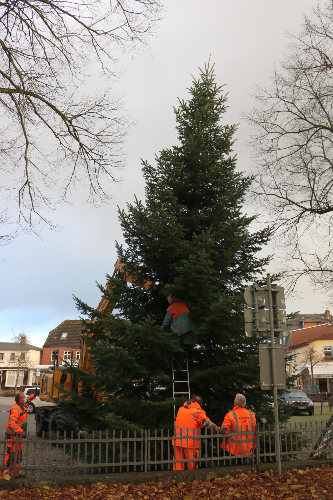 20201123 Weihnachtsbaum Kirchplatz A 13