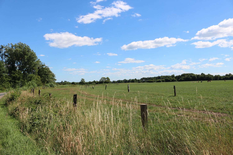Abschnitt 1 Hyholmer Weg