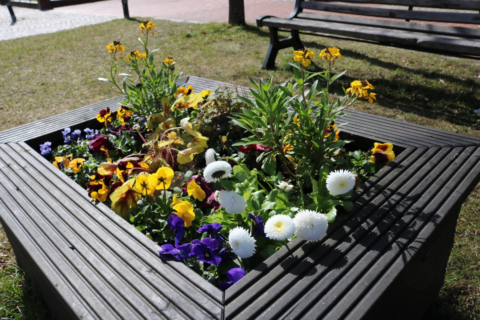 Carstensen Blumenkasten 1